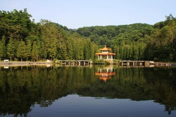 深圳婚纱摄影景点攻略:仙湖植物园
