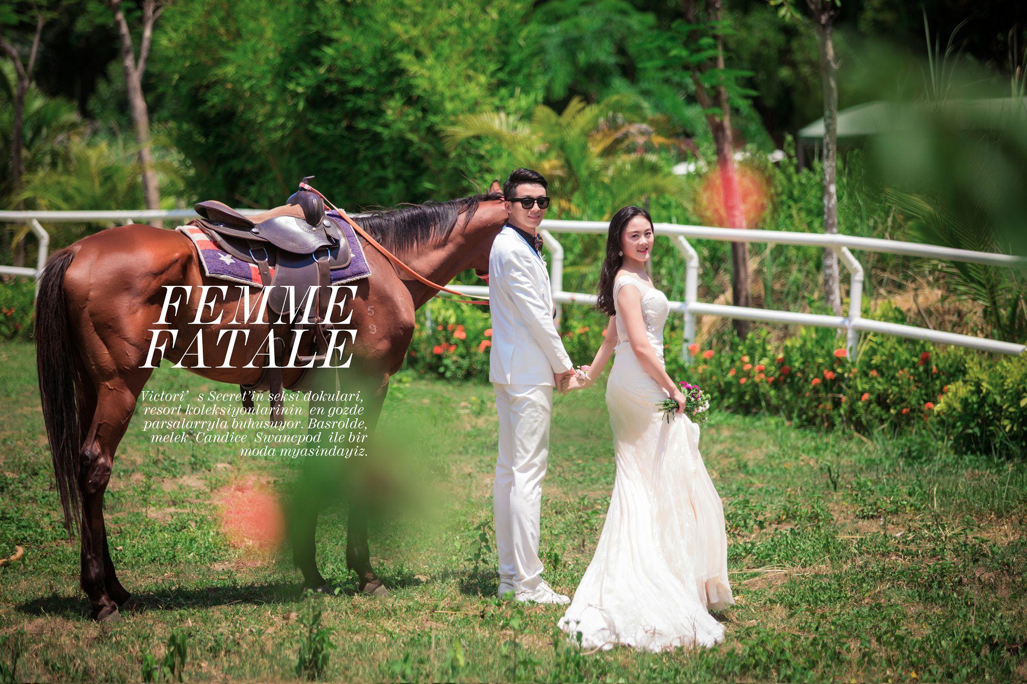 西式婚礼花门如何挑选,不同类型花门的优缺点