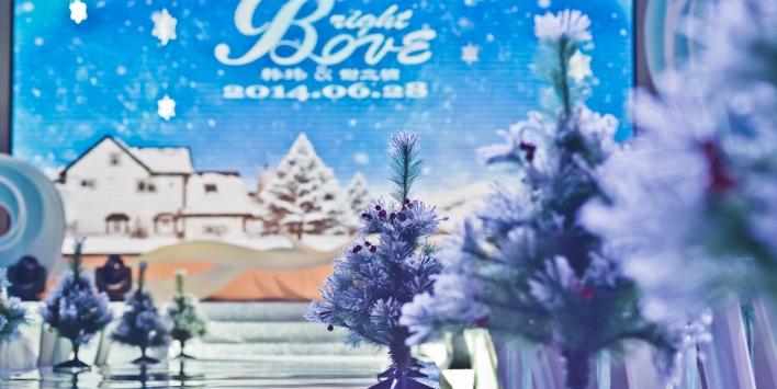 冬天冰雪婚礼 如诗般浪漫的婚礼