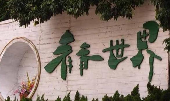 深圳旅拍婚纱照去哪拍好?深圳旅拍景点大全