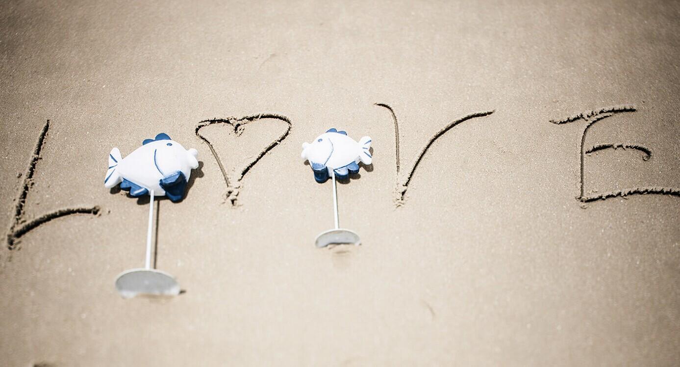 最新最时尚婚礼策划的秘诀