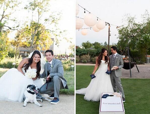 浪漫草坪婚礼装扮技巧 婚礼猫