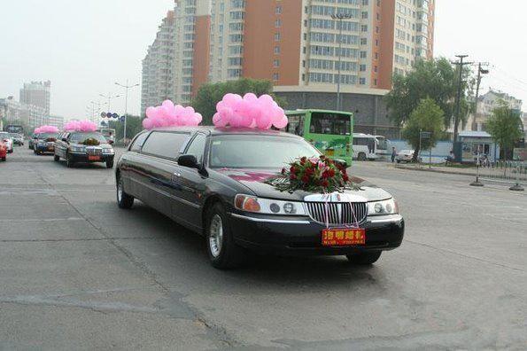 让豪车做婚车 高档奢侈的豪华婚车 婚礼猫