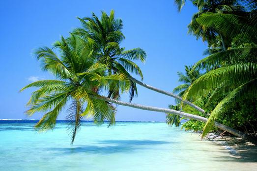 蜜月圣地必选——巴厘岛之行
