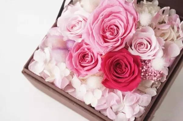 告别鲜花时代 永生花原来可以这么美